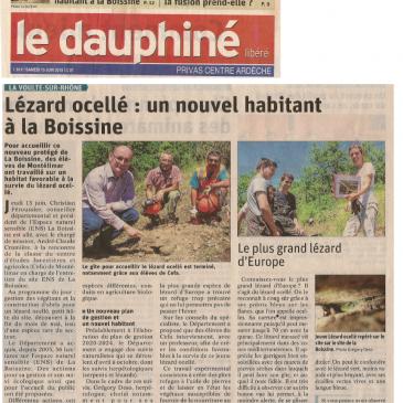 Restauration d'un habitat à Lézard ocellé en Ardèche