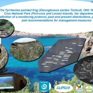 Évaluation des populations de Discoglosses sardes des îles de Port-Cros et  du Levant